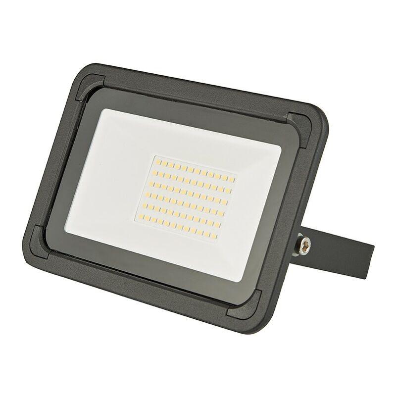 Proiettore da Giardino a LED 10/20/30/50/100W Lampada da Esterno Impermeabile - BIARD
