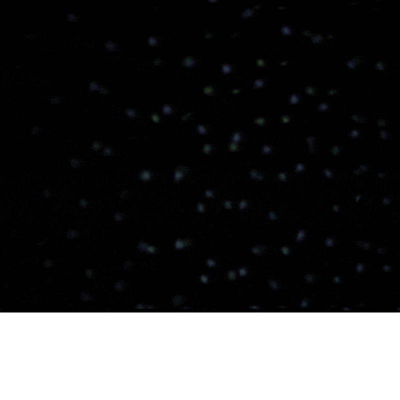 Proiettore Luci Natalizie Effetto Neve.Proiettore Luci Natale Esterno Abs Effetto Neve