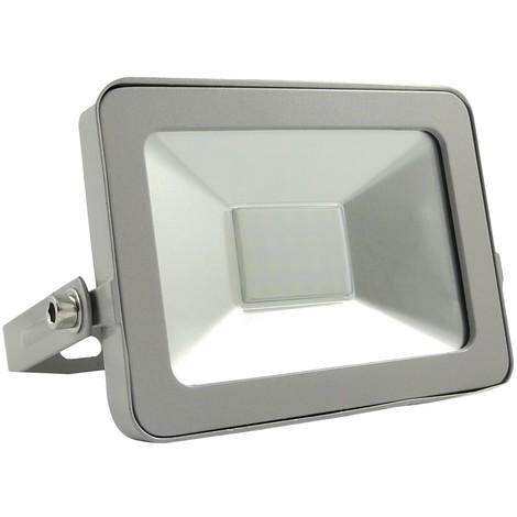 Projecteur LED 10W ProLine 6000K Haute Luminosité