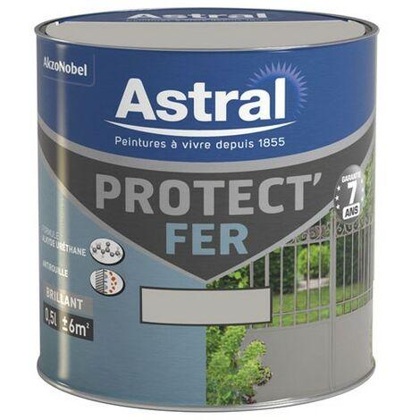PROTECT FER BRILL.0.5L GRIS ACI-ORIGAN (Vendu par 1)