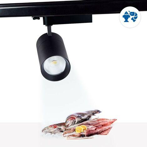 Proyector LED trifásico 30W especial para pescado y marisco