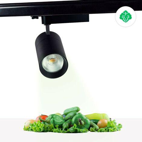 Proyector LED trifásico 30W especial para verdulerías