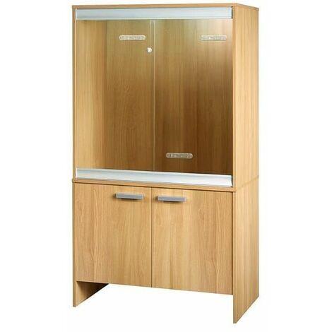 PT4038 - Vivexotic Cabinet Medium - Oak