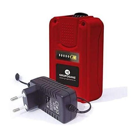 Pulmic Batería de Litio para Pulverizadores Eléctricos Pegasus 15 Industrial 35