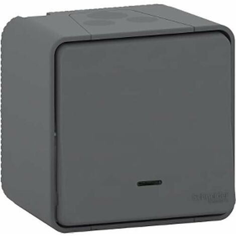 Pulsador simb. timbre luminoso IP44 Blan SCHNEIDER ELECTRIC ENN39128