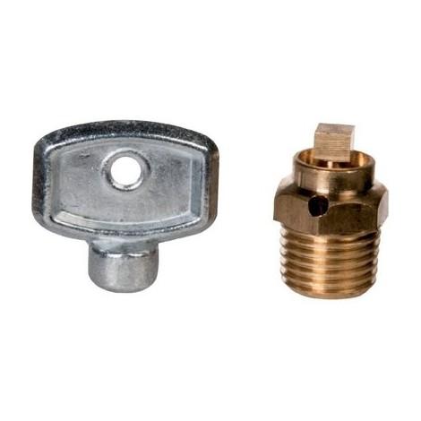 Purgeur d'air laiton à carré - M 1/4' - Watts industries