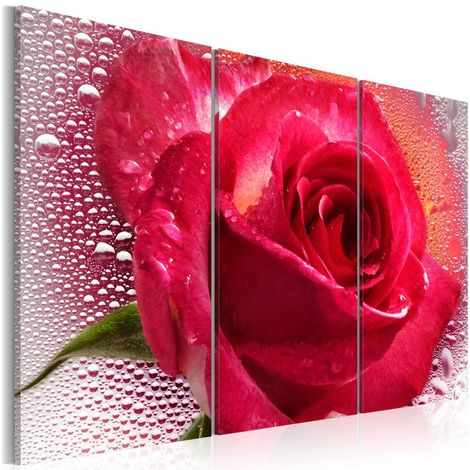 Quadro Lady Rose triptych cm 60x40 Artgeist