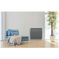 Radiateur Calidou Smart Ecocontrol horizontal anthracite 1000 W (00N3013SEHS)