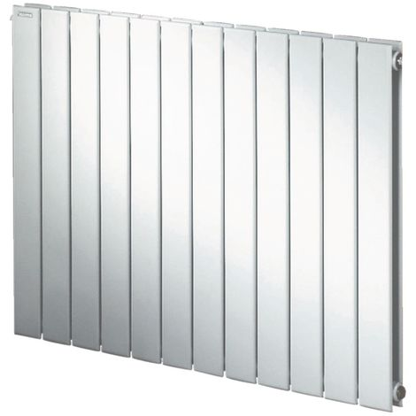 Radiateur FASSANE eau chaude horizontal double à éléments verticaux 1239 w hauteur 700 mm largeur 1036 mm 14 éléments blanc