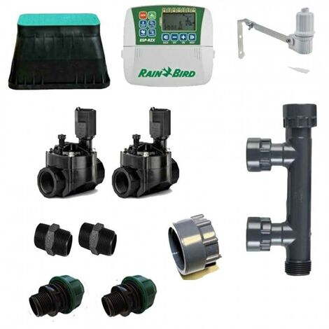 Rain Bird Irrigation Kit 2 Zone interieur 220v