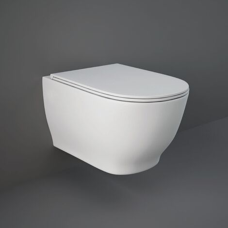 RAK Moon Rimless Wall Hung Toilet Hidden Fixations 560mm Projection - Soft Close Seat