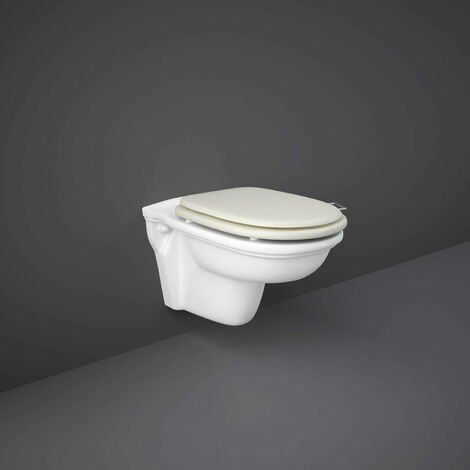 RAK Washington Rimless Wall Hung Toilet 560mm Projection - Greige Soft Close Wood Seat