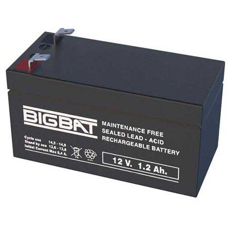 "main image of ""Rechargeable batteries au plomb VRLA 12V 1,2Ah Elan BigBat - sku 012012"""