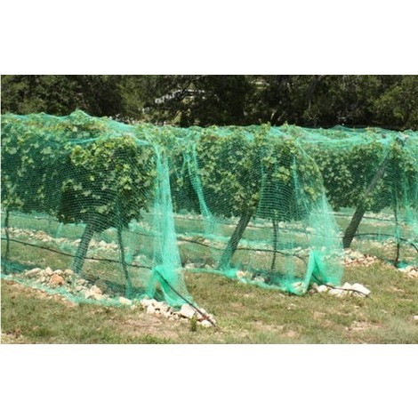 Red Anti-Pajaros 4X5Mts Ideal Arboles Frutales - NEOFERR