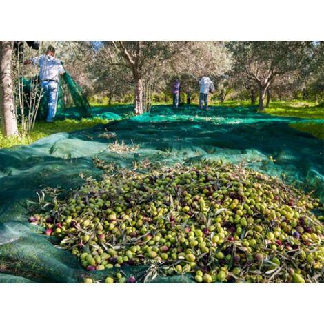 Red de cosecha Pantalón Verde de 10m x 10m