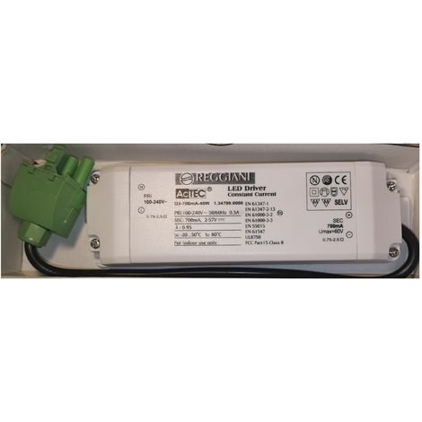 Reggiani 0.30041.0000 Transformer LED 8.5W 100-240Vac 50/60Hz 700mA