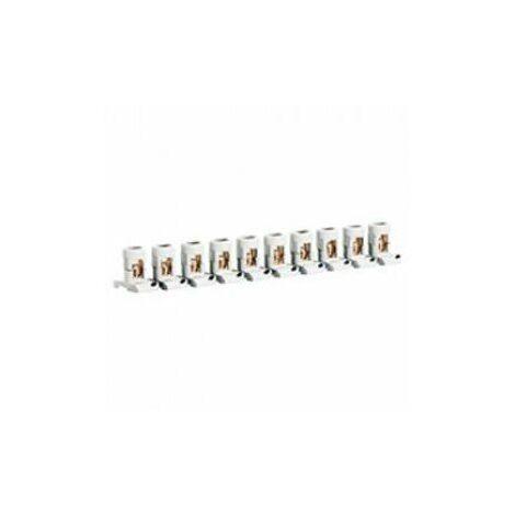Regleta de paso de 10 bornas separables 2x35mm Legrand 034004