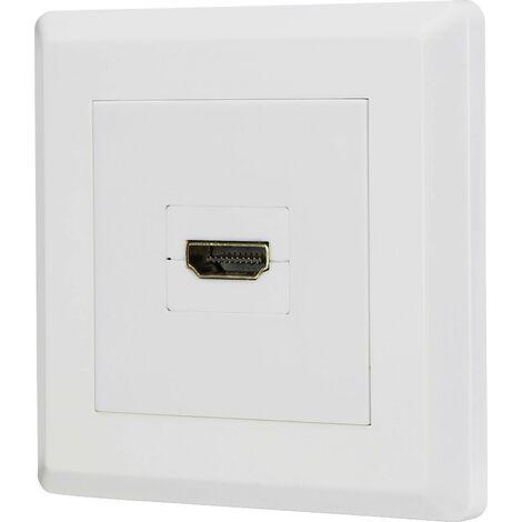 Renkforce RF-3385662 HDMI Adaptateur [1x HDMI femelle - 1x HDMI femelle] blanc contacts dorés X056291