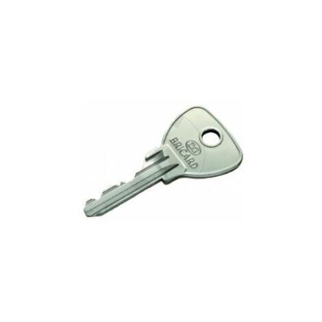 Reproduction de clé modèle ALPHA, marque BRICARD. - BRICL007.