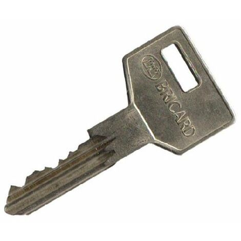 Reproduction de clé modèle Octal, marque BRICARD. - BRICL030.