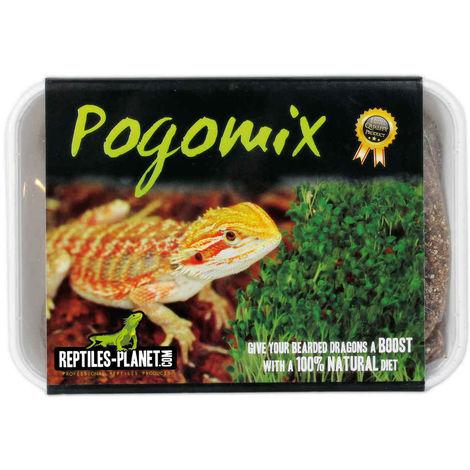 Reptiles Planet - Mix de Graines Pogomix pour Pogonas - 220g