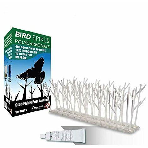 Repulsif Pigeon Kit Pics Oiseaux en Plastique Transparents 10 x 30cm (3 m) Pour Oiseaux Gel dissuasif Transparent