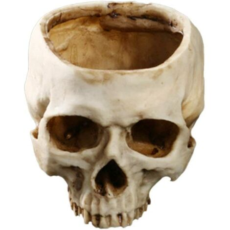 Resin Flower Pot in the Shape of a Skull - for Home, Bar, Halloween or Christmas decoration