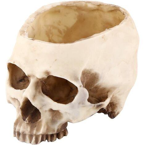 Resin Skull Head Container Design Flower Pot Planter Container Garden Sculpture Desktop Decoration for Halloween Party