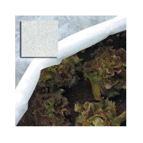 Rete per Ortaggi in Telo in Fibra Ppl 2x10 mt colore Bianco Papillon