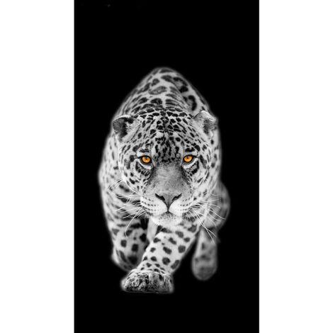 Rideau imprimé léopard en noir et blanc et yeux couleur 140x245 cm, 1 part