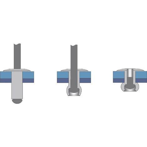 Rivet aveugle N/A Bralo 1210004006 (Ø x L) 4 mm x 6 mm 500 pc(s) W46968