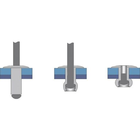 Rivet aveugle N/A Bralo S1040004016 (Ø x L) 4 mm x 16 mm 50 pc(s)