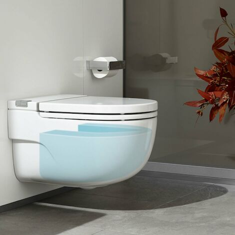 """main image of """"Roca Meridian-N In-Tank Wall-Hung Toilet with Cistern L Support - Soft Close Seat"""""""