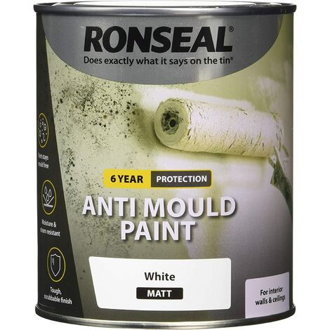 Ronseal Anti Mould Paint White Matt 750ml