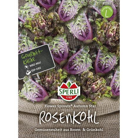 Rosenkohl Flower Sprout Autumn Star