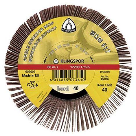 Roue à lamelles WSM 617 125x20mm G40 Klingspor 1 PCS
