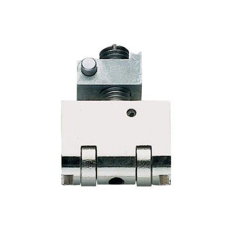 Rouleau seul pour Blindo et Multiblindo ISEO - Axe 25 mm - 040801