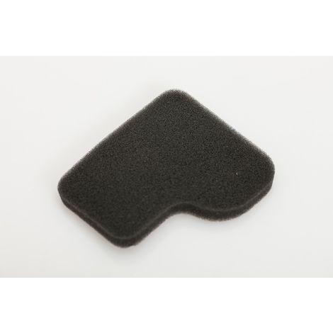 Rowenta, Tefal, Krups Motorschutzfilter, Staubsaugerfilter für Compacteo - RS-RT900065