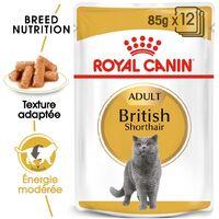 Royal Canin Feline Breed Nutrition British Shortair Adulte – Sachets, 12 x 85 g