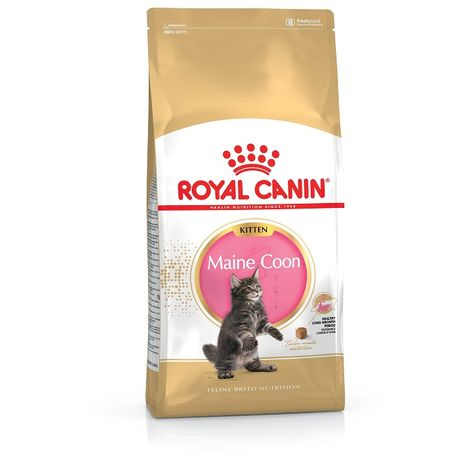 Royal Canin Feline Kitten Maine Coon