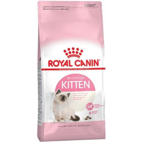 Royal Canin Gatto Kitten