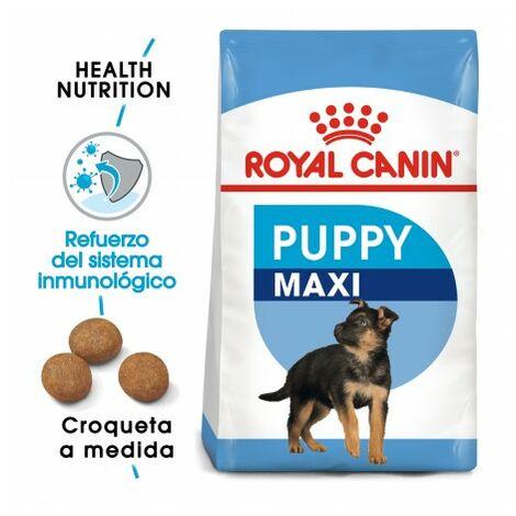 """main image of """"Pienso ROYAL CANIN MAXI JUNIOR perros de tamaño grande (Hasta 15 meses)"""""""
