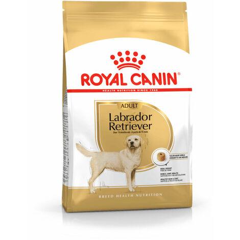 Royal Canin per Cane Labrador Retriever Adult