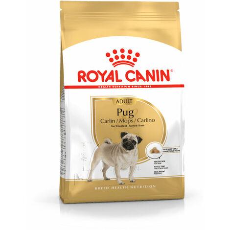 Royal Canin Pug Carlino