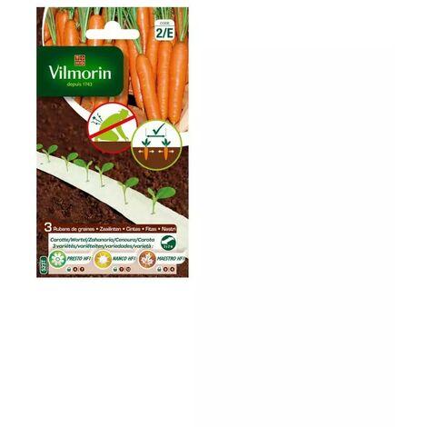 Ruban de graines saison de carottes HF1 ( presto, nanco , maestro )