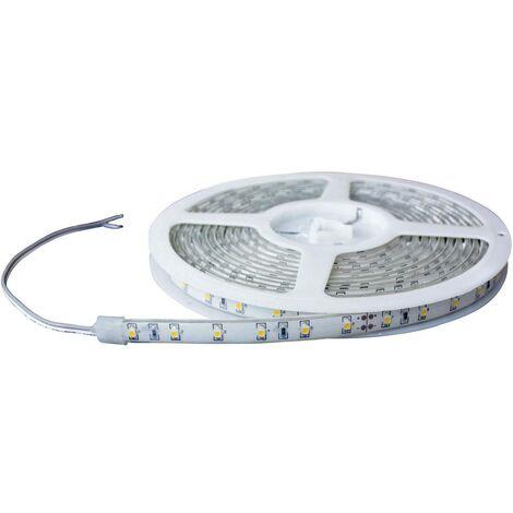 Ruban LED Barthelme 51618414 51618414 bleu N/A