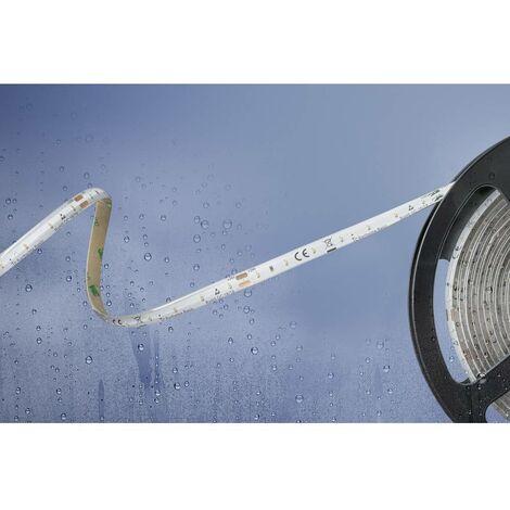 Ruban LED Barthelme Basic 51540328 51540328 blanc chaud N/A