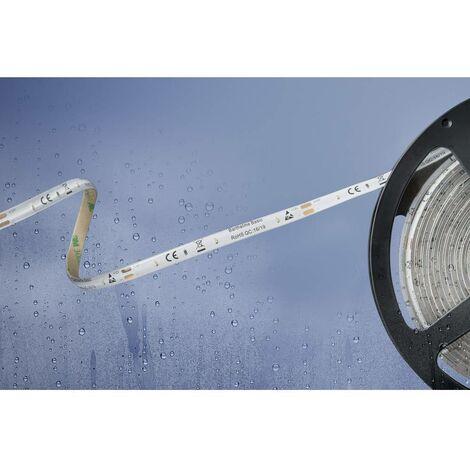 Ruban LED Barthelme Basic 51540428 51540428 blanc chaud N/A