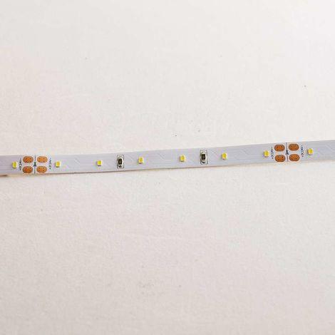 Ruban LED Blanc 60 LED/m 4,8W/m