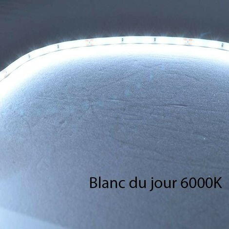 Ruban LED Blanc 60 LED/m 4,8W/m IP20 10m - Blanc du Jour 6000K